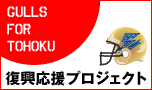 Gulls for Tohoku