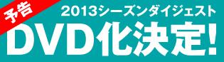 2013dvd_m.jpg
