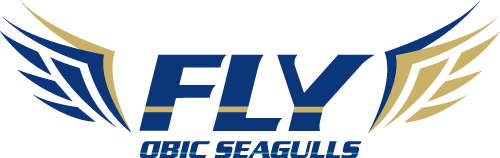 FLY%20OBIC%20SEAGULLS_logo.jpg
