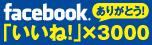 facebook3000.jpg