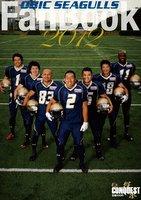 fanbook2012s.jpg