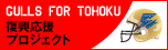 forTOHOKU2013ss.jpg