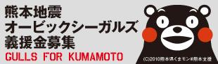 gulls_fo_kumamoto_banner.jpg
