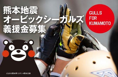 gulls_fo_kumamoto_slide.jpg